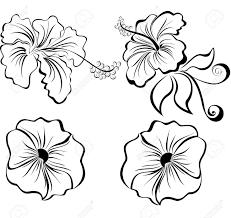 Resultado de imagen para vector flowers black