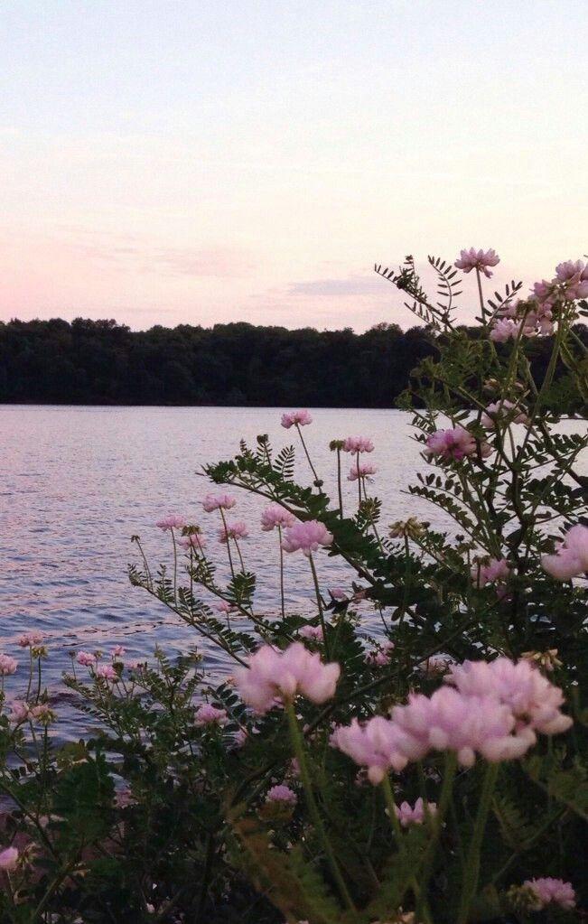 Pinterest Cosmicislander Beautiful Nature Scenery Landscape