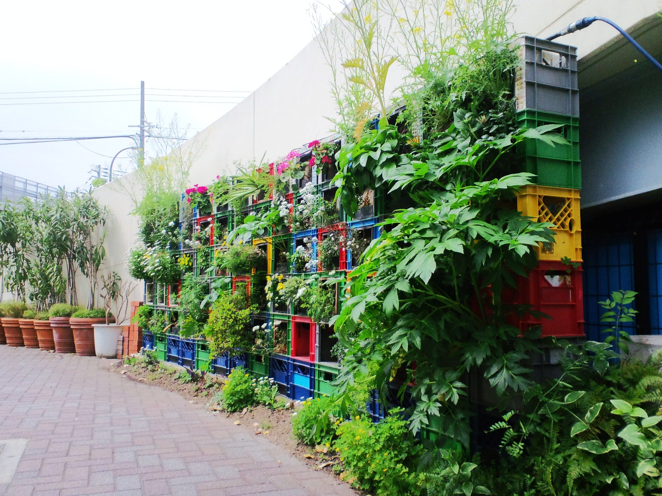Milk crate vegetable vertical garden vegetable gardening for Vertical vegetable garden