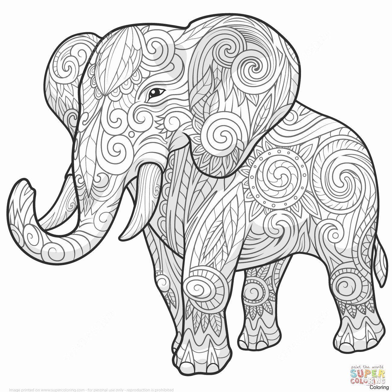 Asian Elephant Coloring Pages Best Of Elephant Mandala Coloring Pages Fresh Lovely Asian Elephant Di 2020 Gambar Hewan Hewan Setik