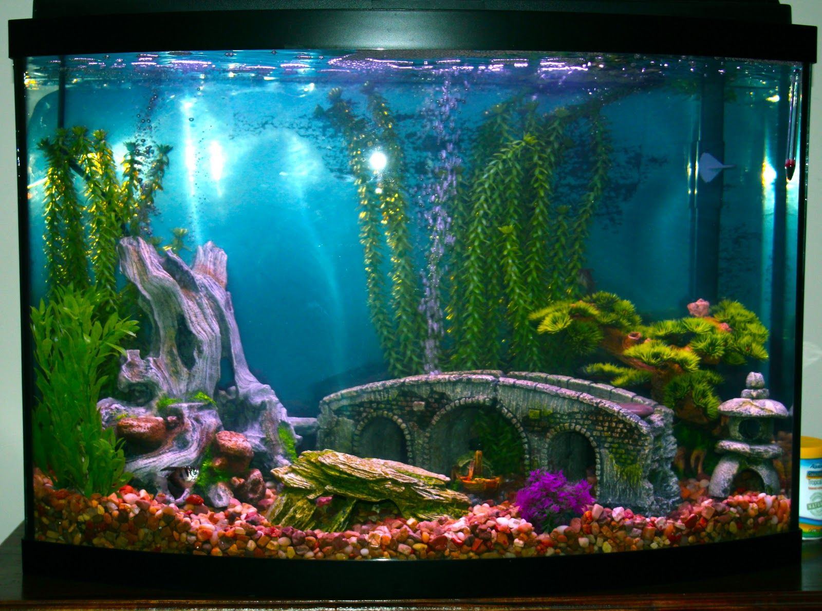 Fish tank decorations google search fish tanks for Aquarium house decoration