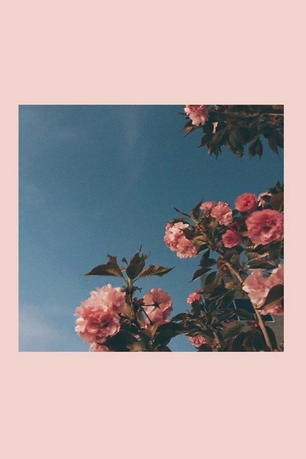 Aesthetic Wallpaper For Iphone Free Download In 2020 Aesthetic Iphone Wallpaper Aesthetic Wallpapers Ipad Wallpaper