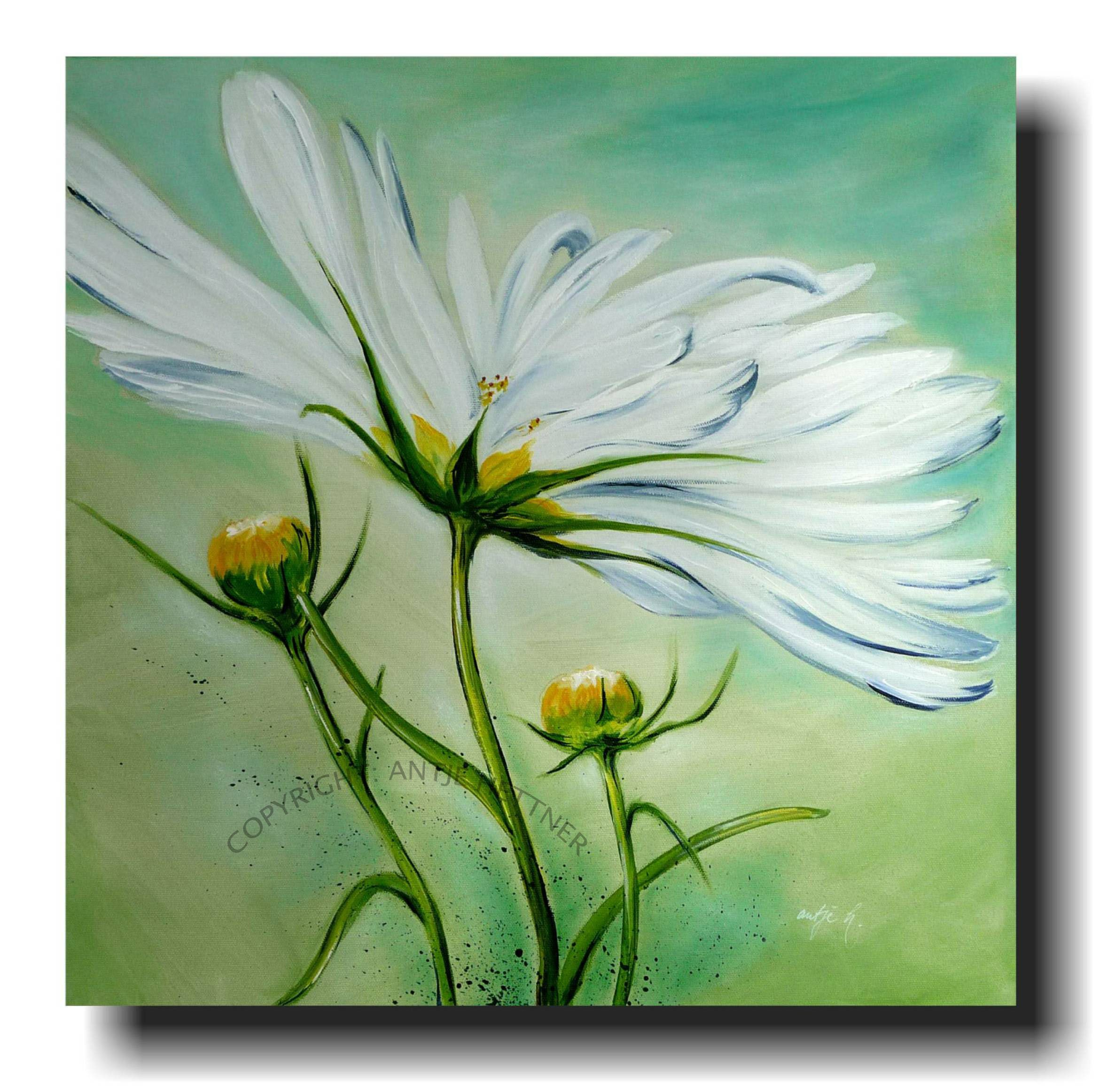 cosmea im wind acrylic art on canvas my favourite. Black Bedroom Furniture Sets. Home Design Ideas