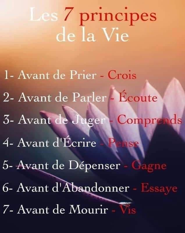 Les 7 Principes De La Vie Philosophy Quotes French Quotes Words