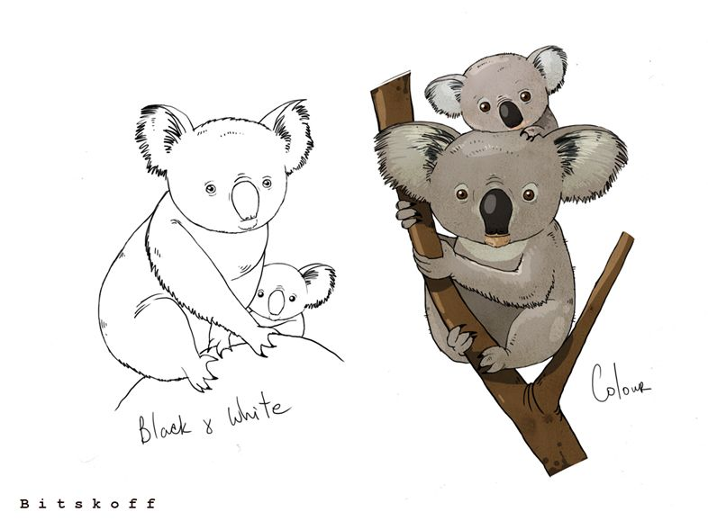 Draw a Koala Bear · Art Projects for Kids |Cute Baby Koala Leg Drawing