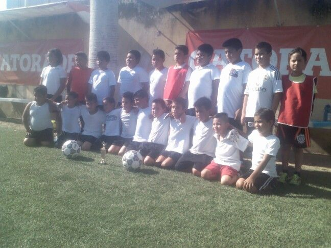 Academia cat 2006-2010