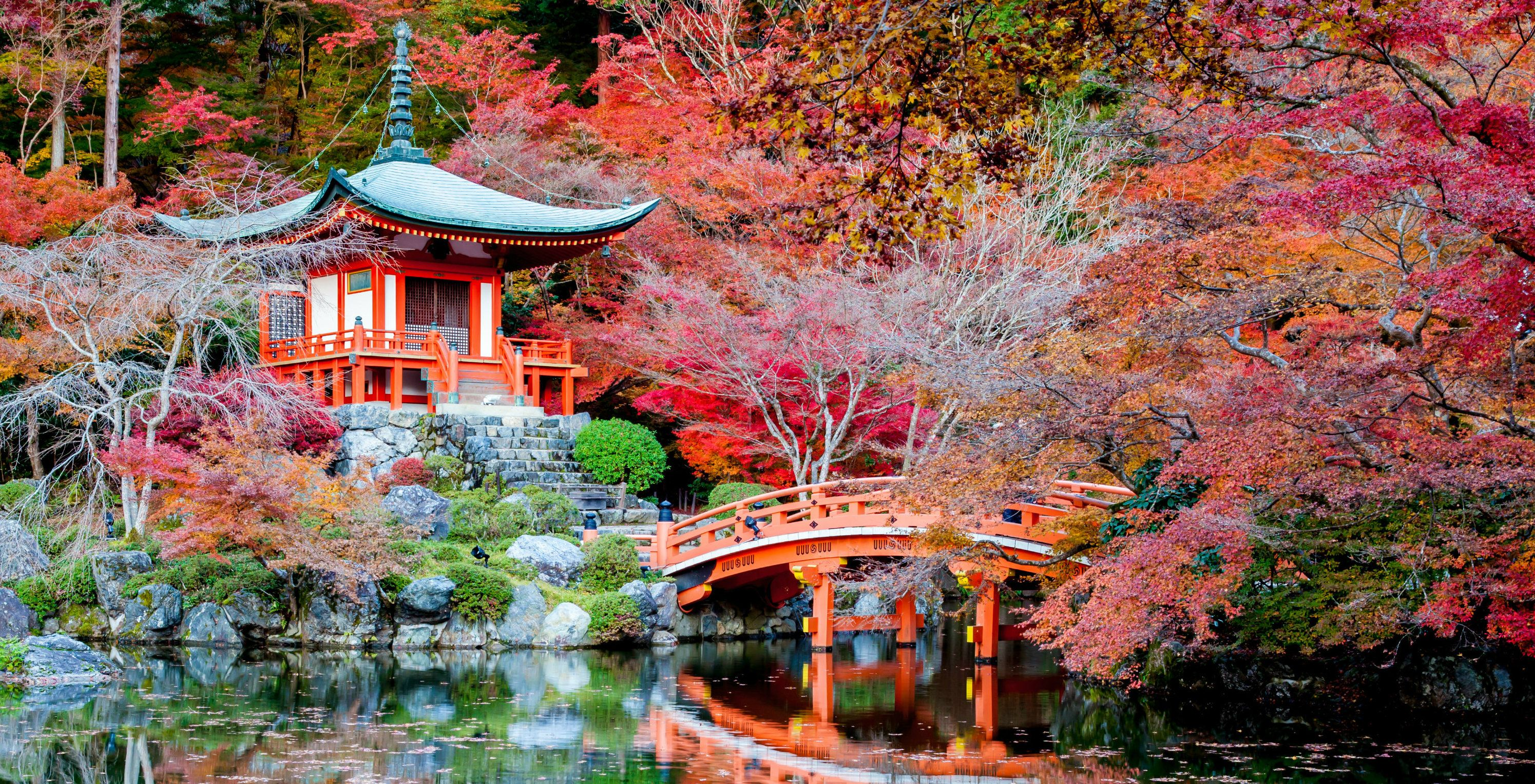 Japan's Most Beautiful Castles Best Of Lists, Day Trips