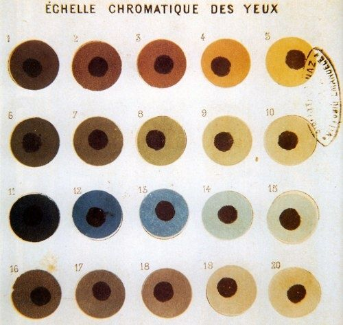 Vintage (and French) Eye Color Chart: | Skin color chart ...