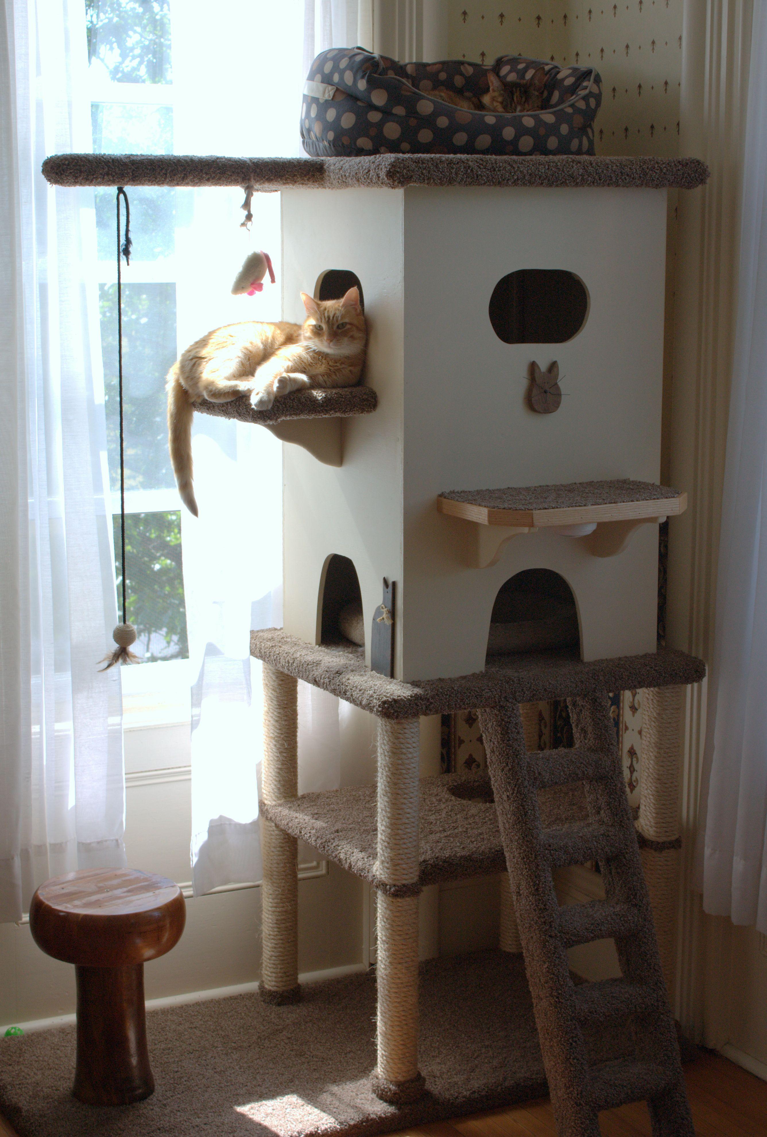 Pin De Lourdes Ku En Kitty Casita Para Gatos Torres Para Gatos