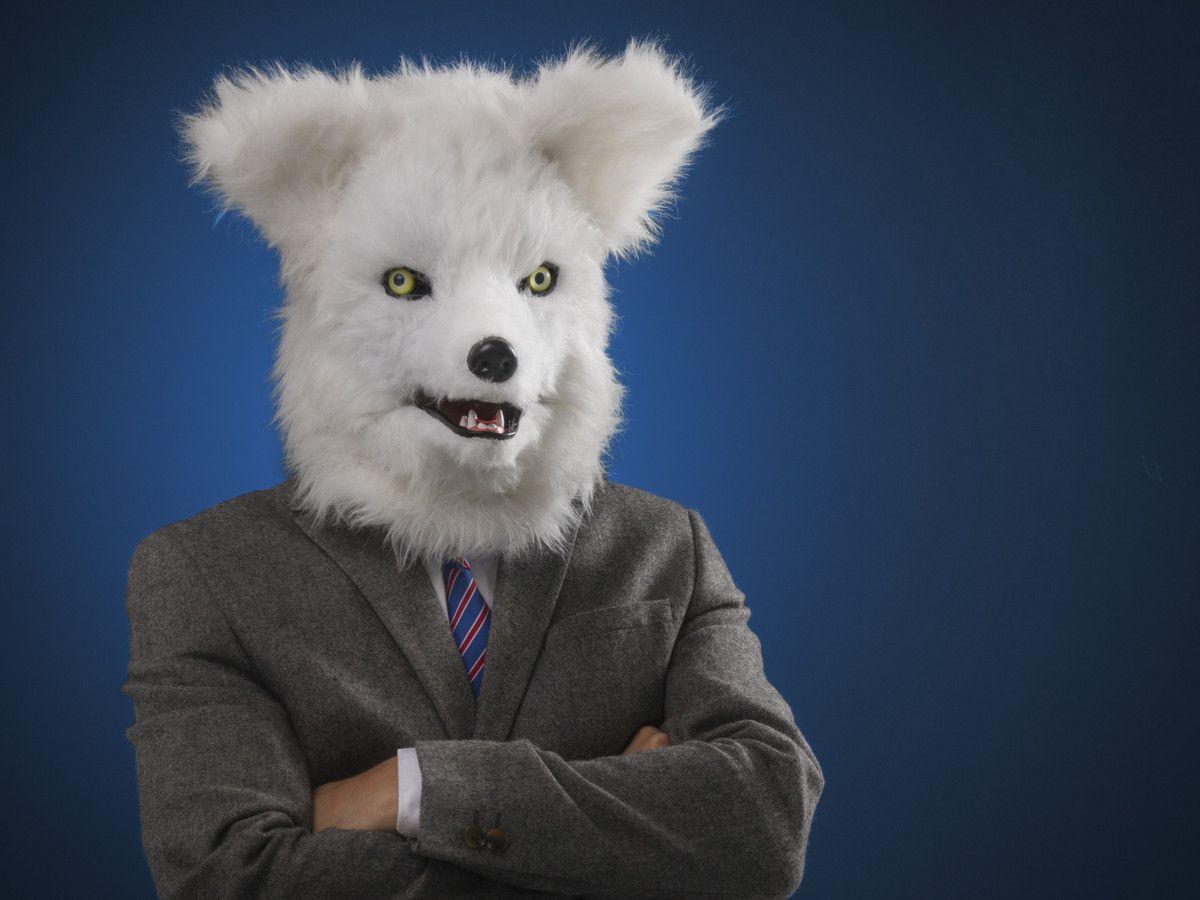 MR. FOX - POLARFUCHSMASKE Erschrecke deine Freunde mit dieser Polarfuchsmaske, und sie werden sich ihr Leben lang vor dem Fuchs gruseln! - coolstuff.de