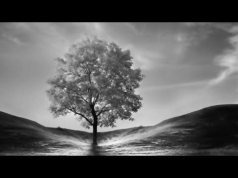 Black and white photo editing photoshop blend effect