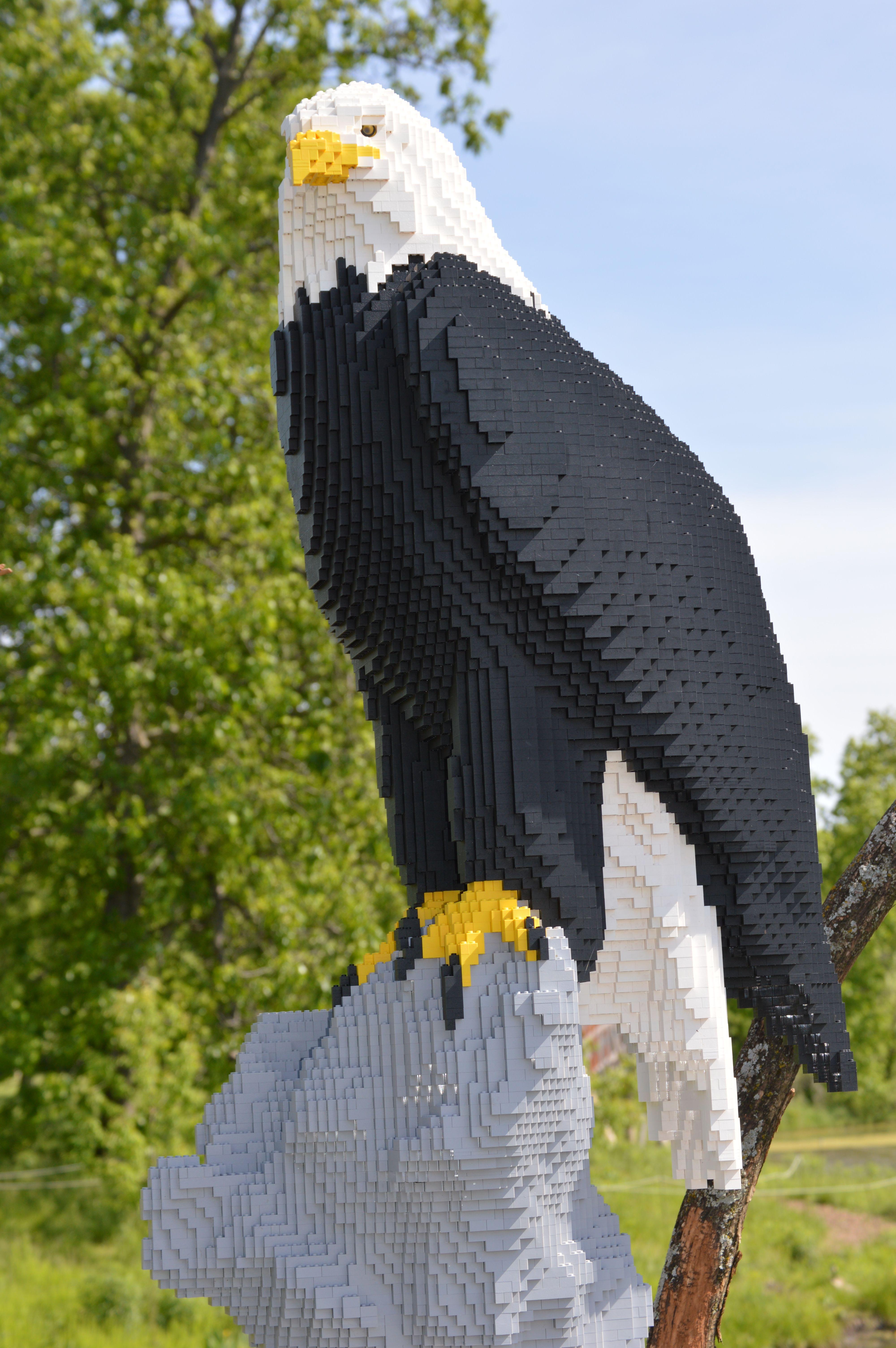 Lego Art Eagle At Powell Gardens In Missouri Art Legos
