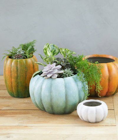 Gorgeous (Not Gory) Halloween Decorating Ideas\u2014All Under $40
