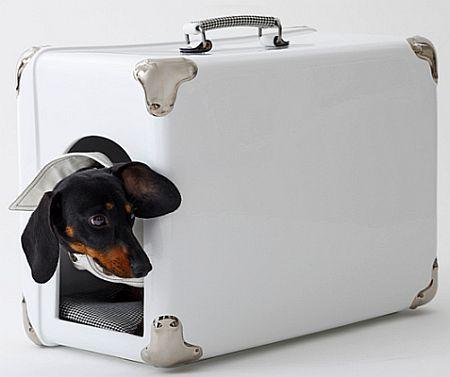 Mala para transportar seu cachorrinho