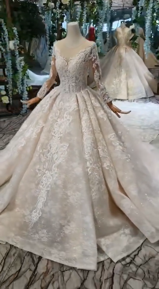 Photo of Princess Long Sleeves Sheer Neck Ball Gown Lace Wedding Dresses, Long Bridal Dre… – Welcome to Blog