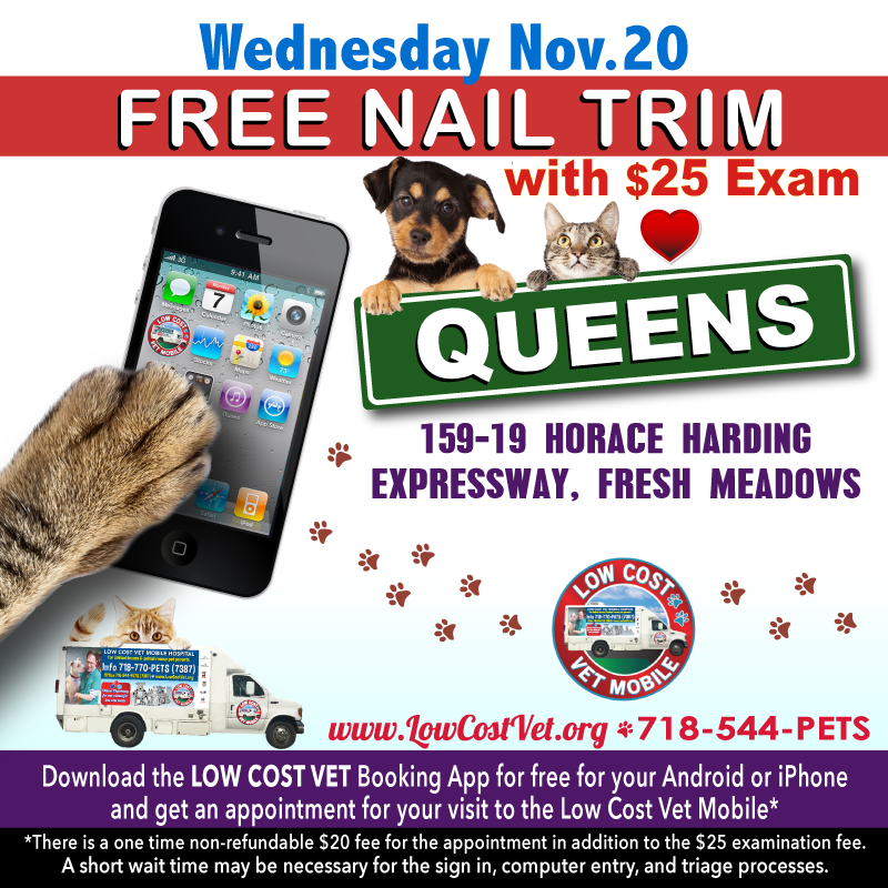 Free Nail Trim With 25 Exam At 159 19 Horace Harding Expressway Queens Fresh Meadows Ny Lowcostvet Vetyourpet Microchip Veterinary Services Vets Low Cost
