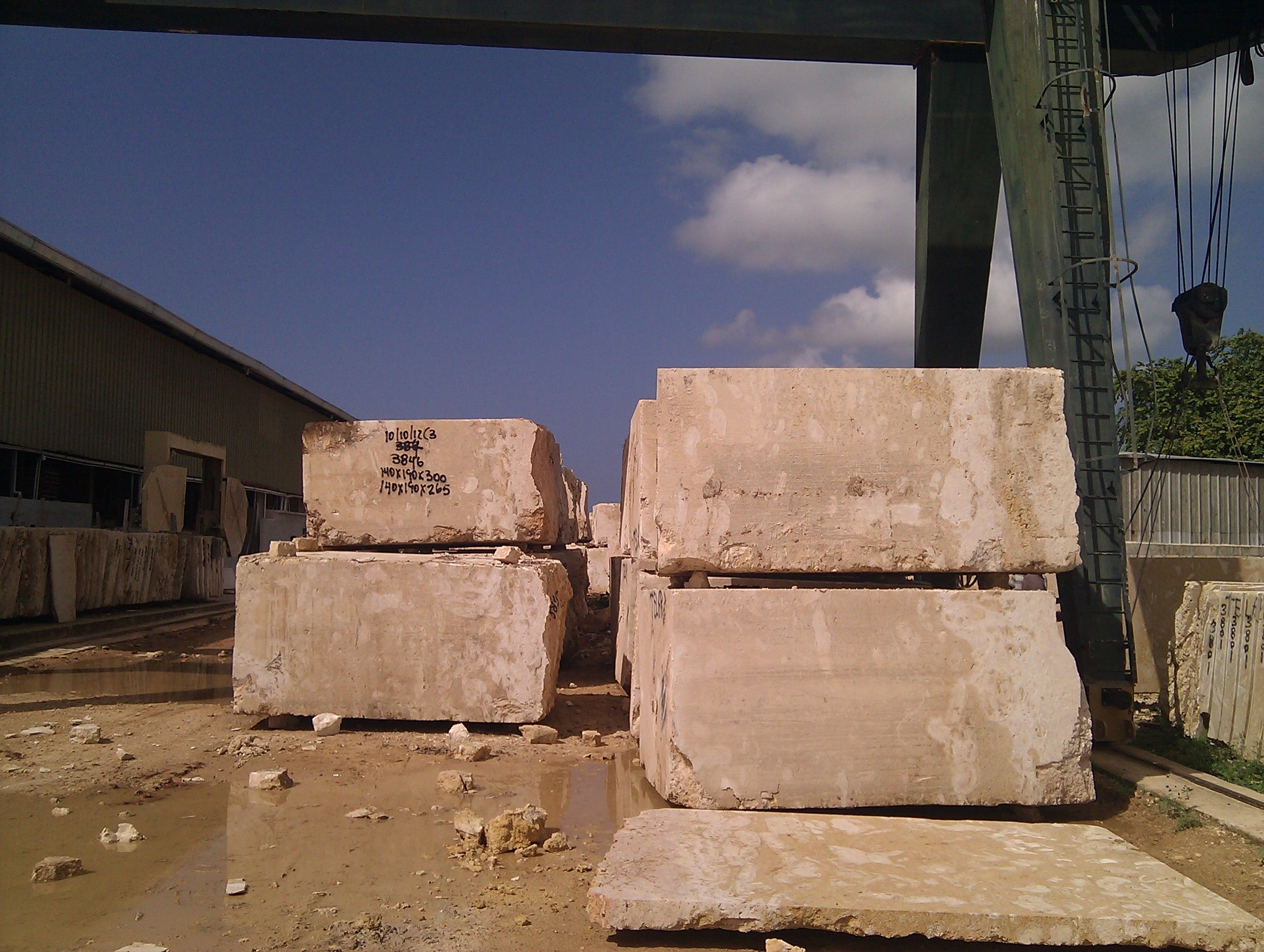 Factory / Quarry. Coral Stone Blocks to Produce Floor Tiles / Slabs