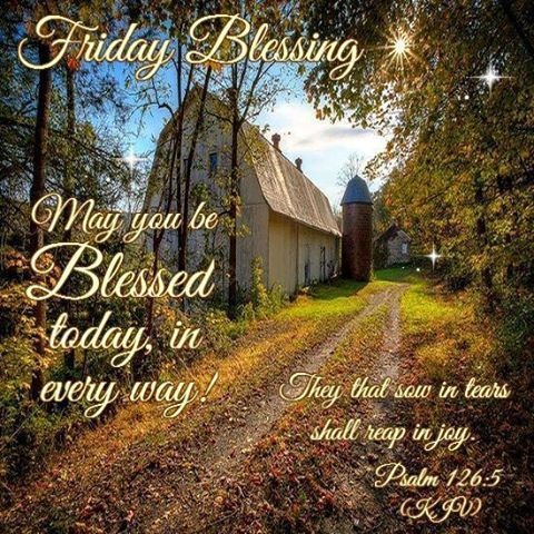 Good Morning Everyone, Happy Friday. I Pray That You Have A Safe And  Blessed Day!