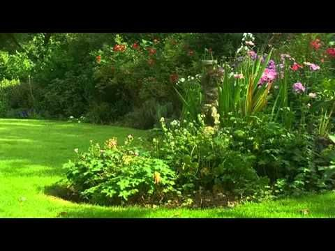 A Really Excellent Series On How To Be A Gardener. Packed With All The  Knowledge