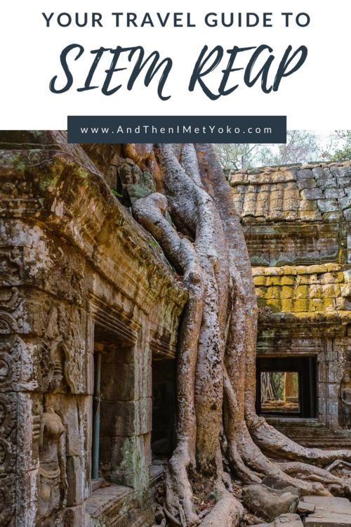 Spend 2 days exploring ancient temples and the backcountry of Siem Reap with two amazing private tour guides. This travel guide includes highlights with tips and photo galleries. #siemreap #angkorwat #taprohm #travelguide #travelblog