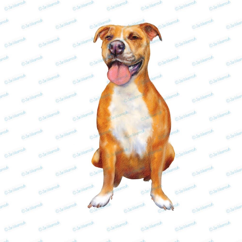 Pitbull Clipart Dog Clipart Instant Download Digital Watercolor