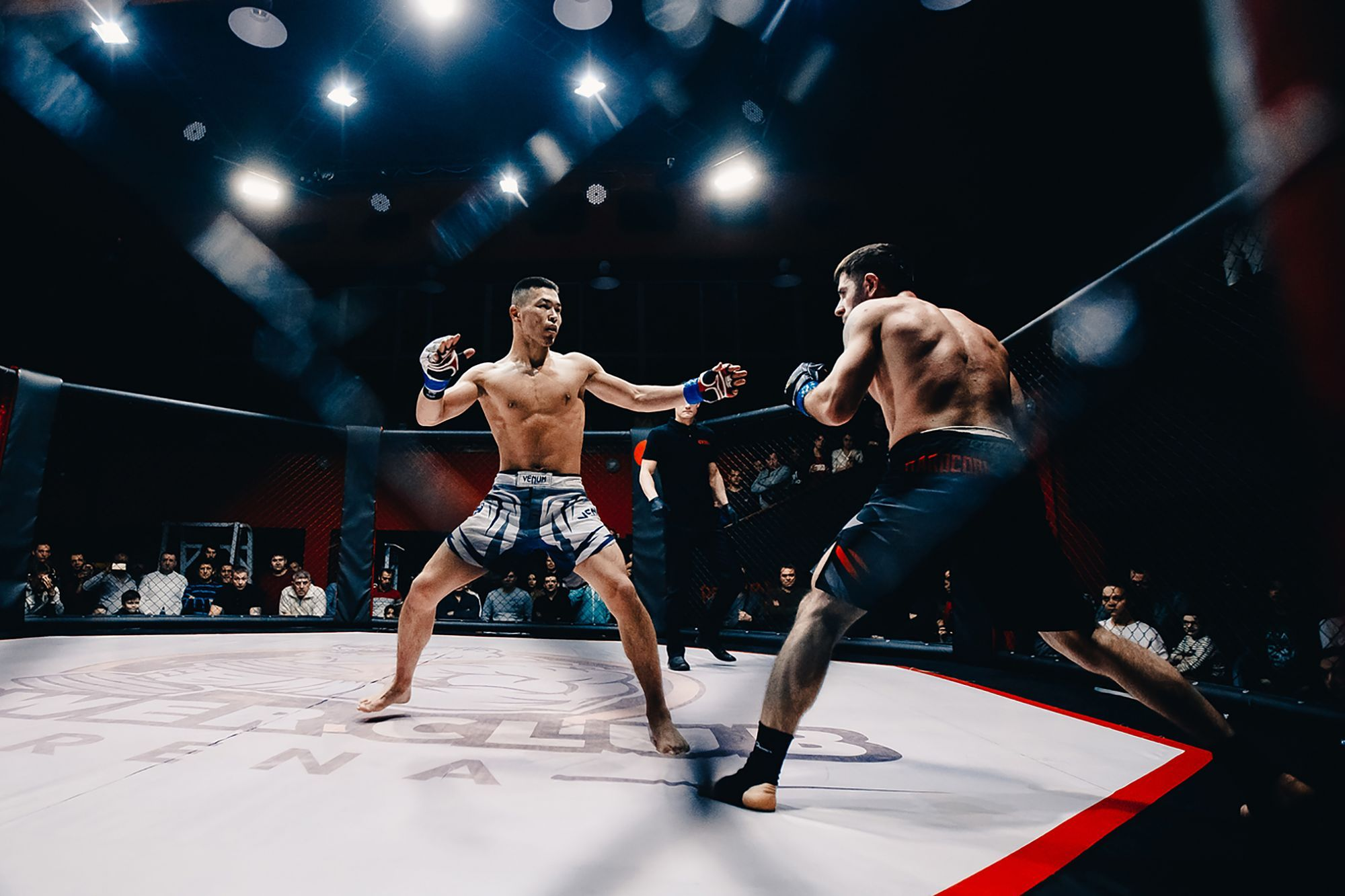 How Cbd Entered The World Of Mixed Martial Arts Mixed Martial Arts Martial Martial Arts
