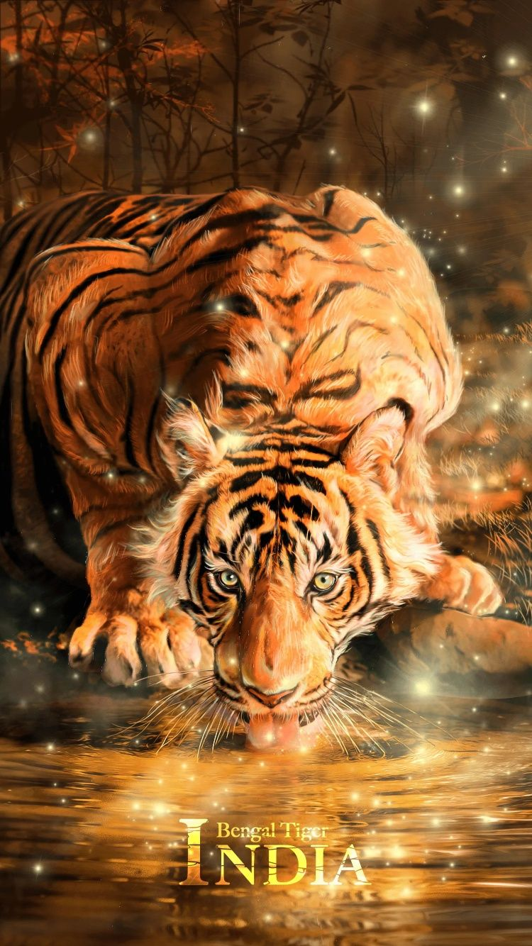 Epingle Par Flo Blackcat Sur Space Nature Fond D Ecran Tigre Fond Ecran Coloriage