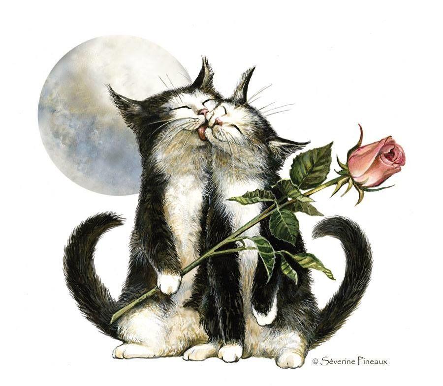 воспитывал красивые рисунки котов и кошек пара под кат, чтобы
