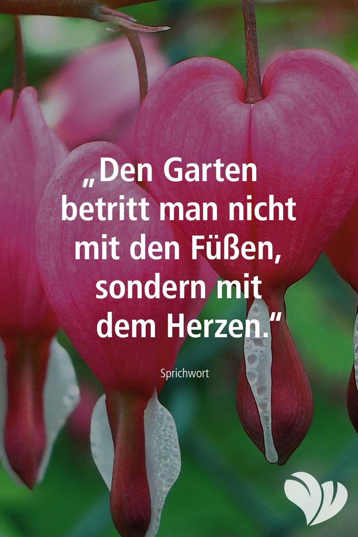 Garten Spruch Mit Herz Spruche Garten Spruche Mit Herz Spruche