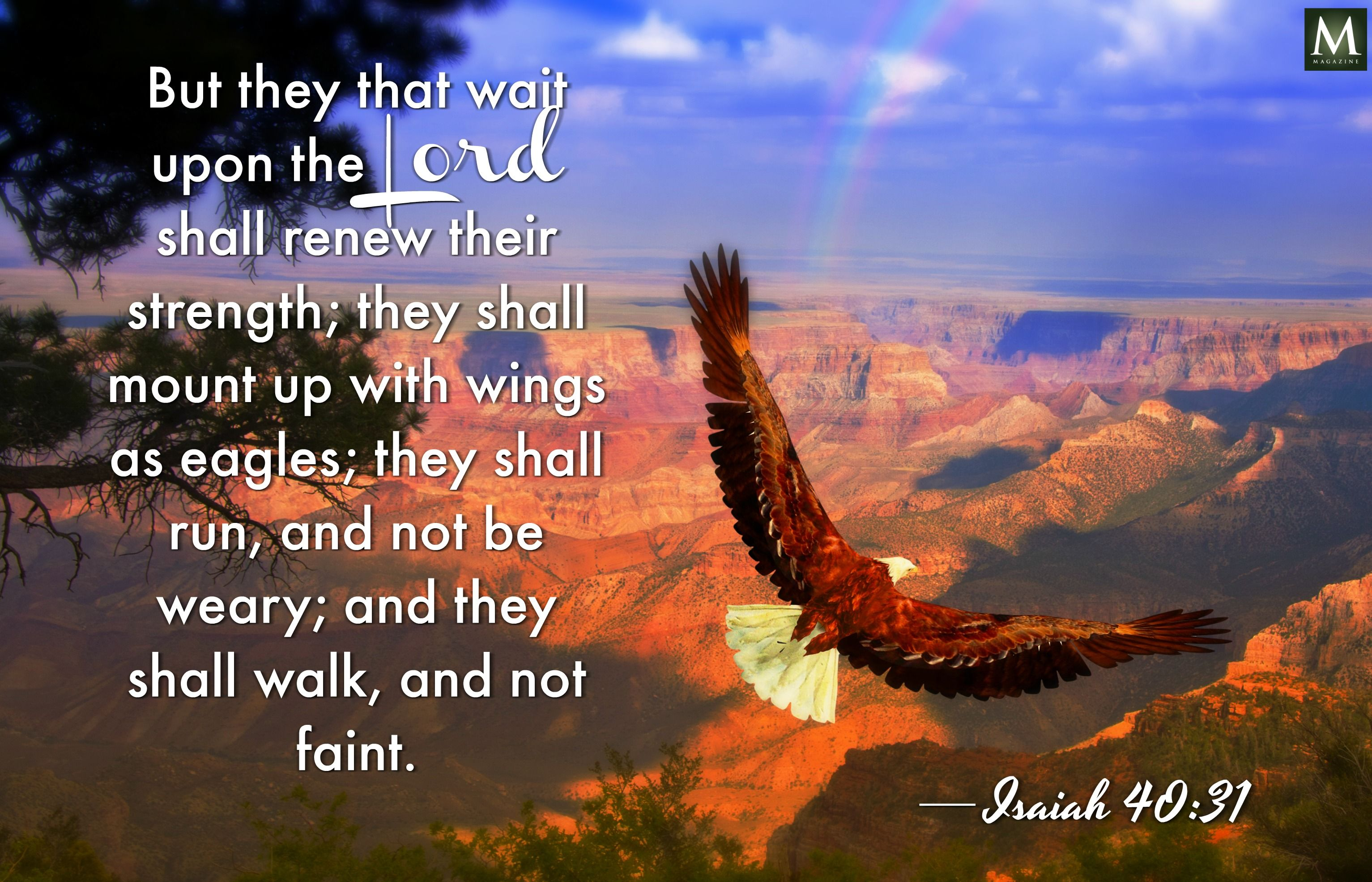 But they that wait upon the Lord shall renew their strength; they shall mount up with wings as eagles; they shall…    Faith verses, Wait upon the lord, Isaiah 40 31