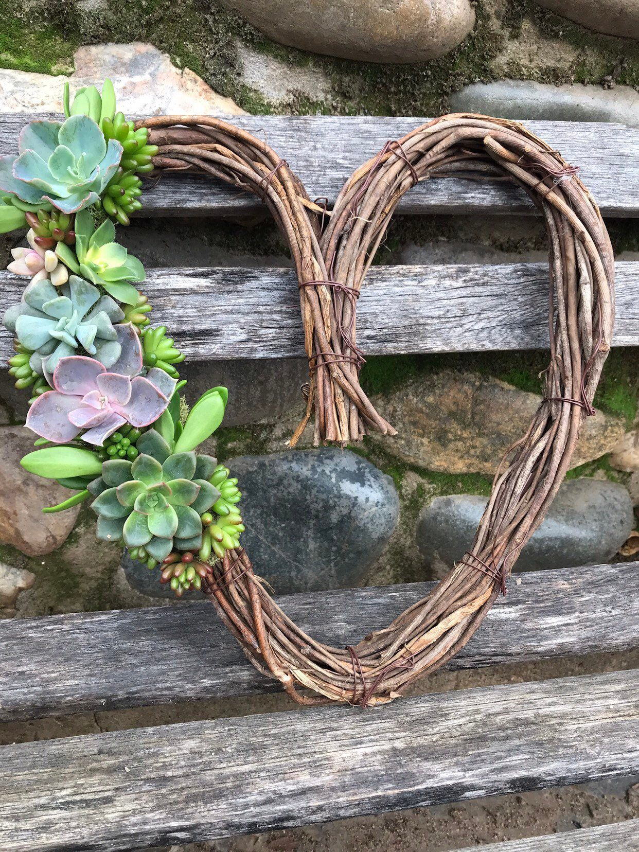 Live Hanging Succulent Topped Grapevine Heart Wreath Hanging Succulent Decor Holiday Gift Idea Mini Succulent Wreaths Living Gift Succulent Wreath Diy Grape Vines Succulents Decor
