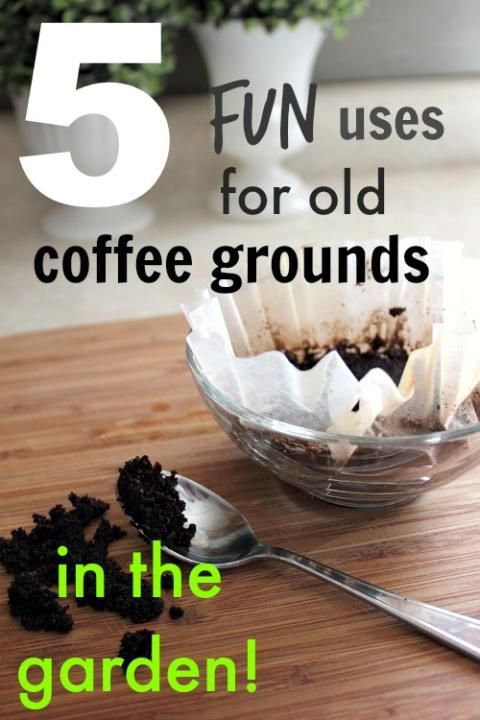 Make Use Of All Those Spent Coffee Grounds By Adding Them To Your Garden Great Easy Tips