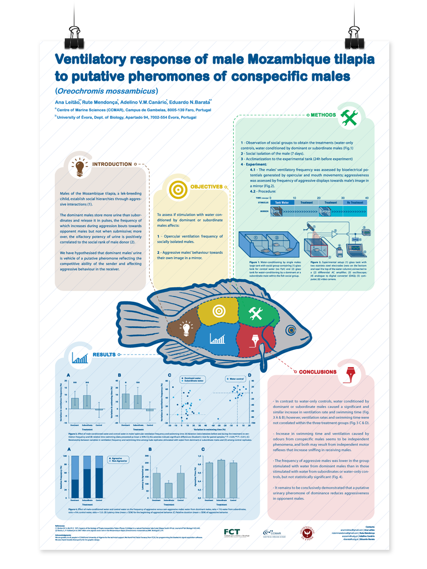 Scientific Poster On Behance Poster Pinterest Behance - Scientific poster ideas