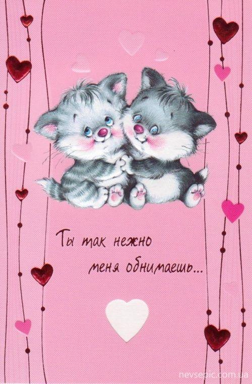 Прощеное, открытки любимой котики