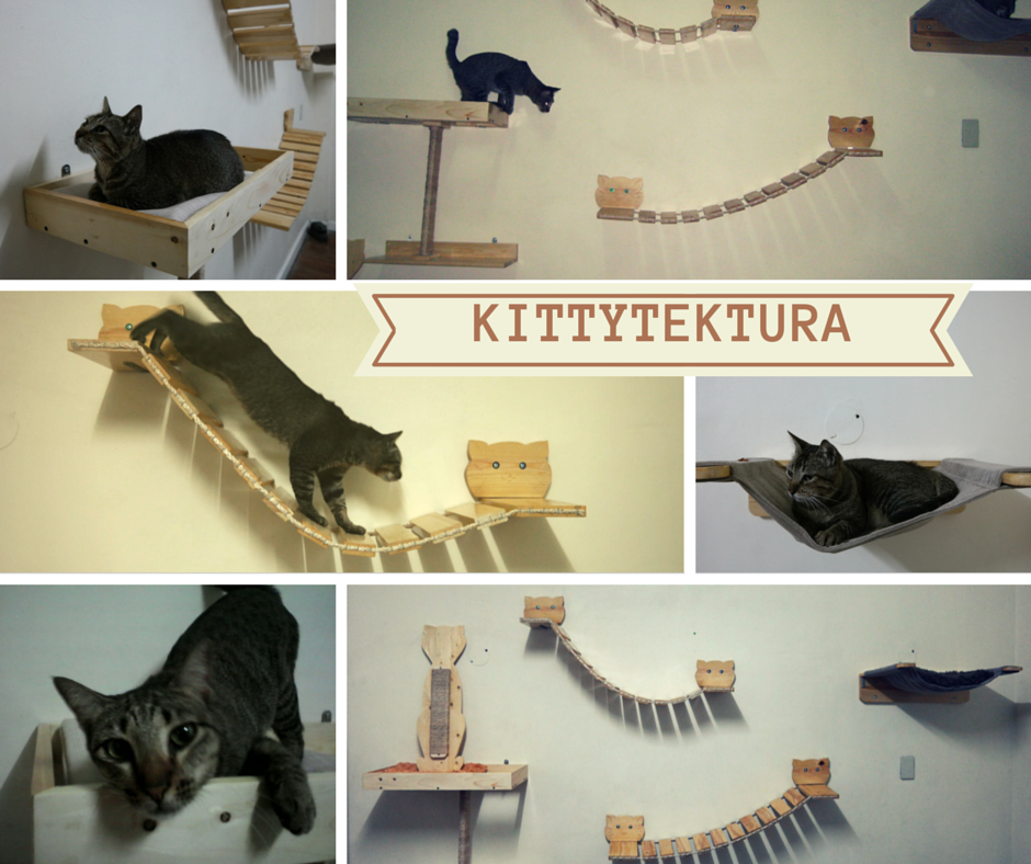 Cat Wall Furniture Philippines Cat Bed For My Yeti Pinterest