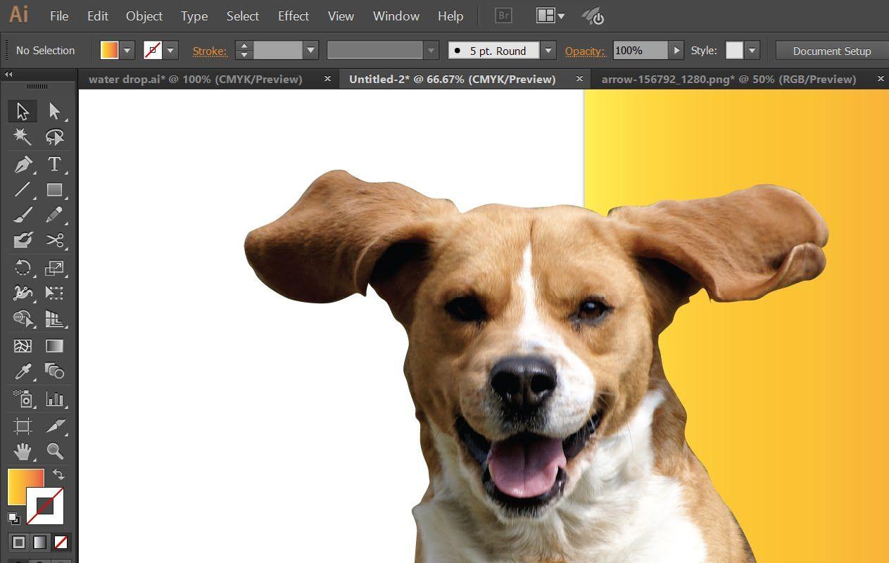 Erase the image background in Adobe Illustrator, Making