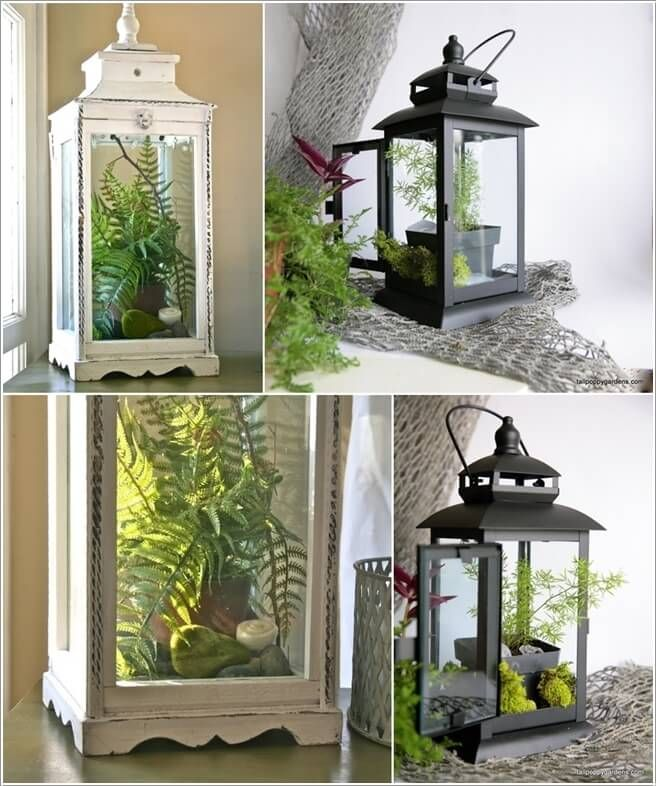 Ordinary Planters For Indoor Plants Part - 8: Display A Single Indoor Planter Pot In A Hurricane Lantern