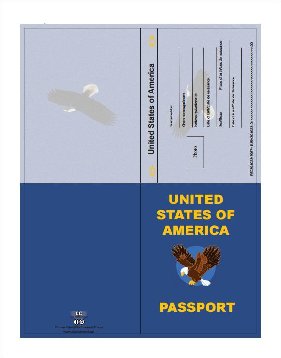 Passport Template Sample  Vbs Spy    Passport Template