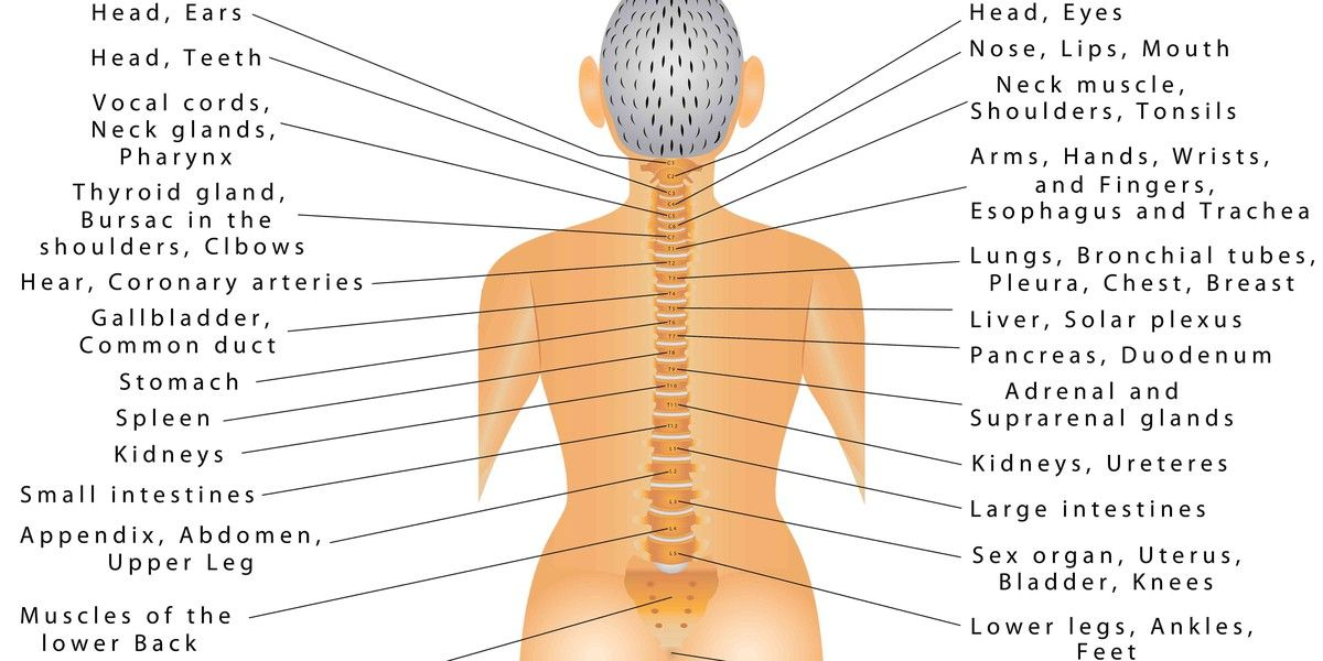 Pin On Medical Conditions  U0026 Diseases