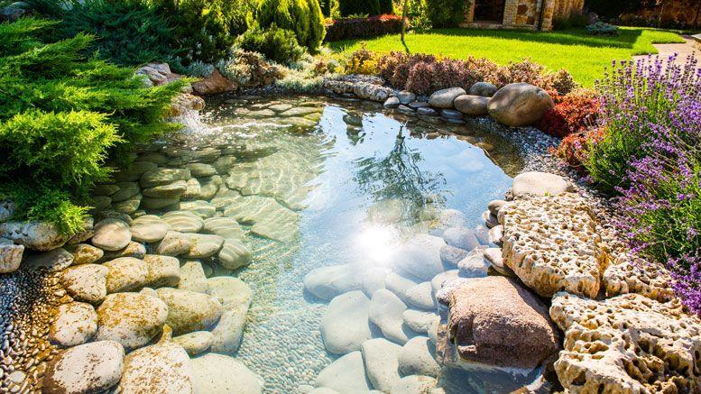 Bien plus qu\'un besoin esthétique, l\'installation d\'un bassin de ...