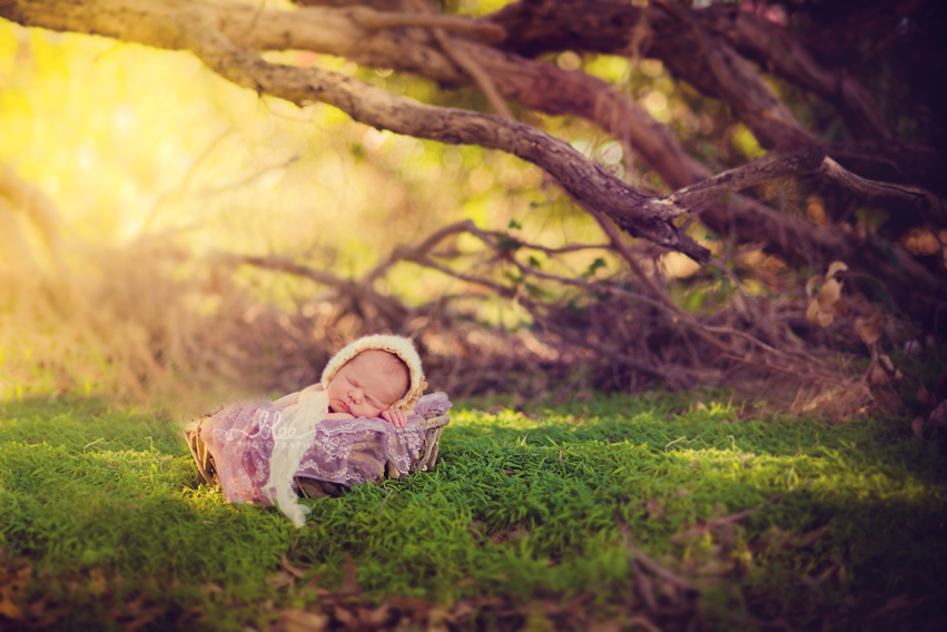 Perth outdoor newborn session | Franca, 10 days Perth Photography