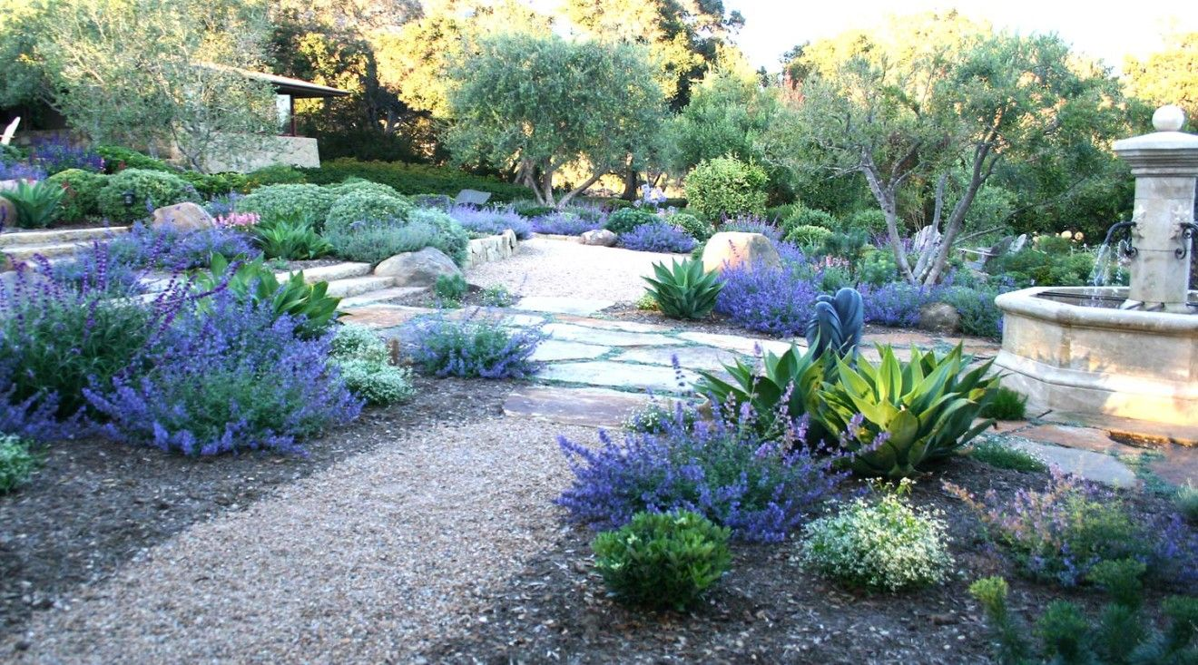Modern drought tolerant landscape design is normally all ...
