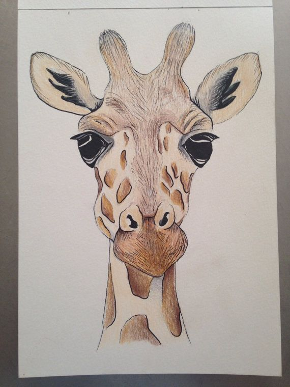 A5 giraffe face drawing using pencil and ink by zeldaartlettering
