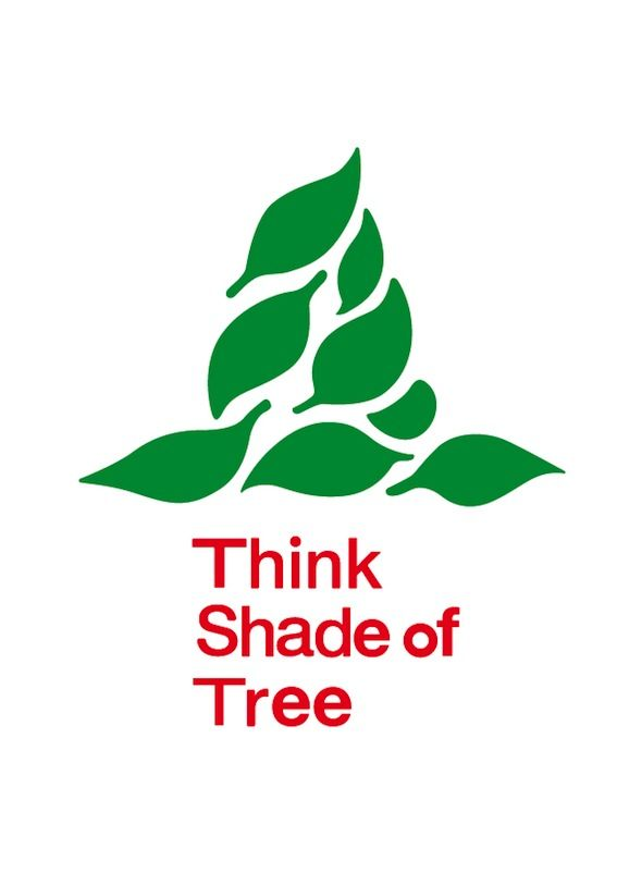 think shade of tree - tkm portfolio