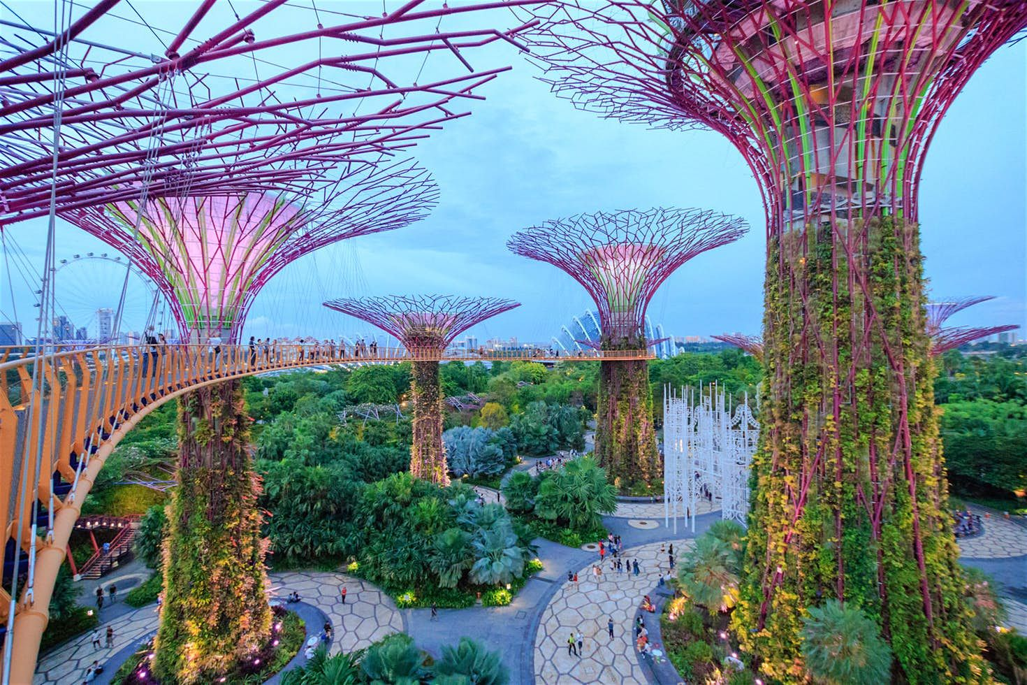 3b58c4a9a352fc1c8c990e95fd0e12cb - Best Time To Go To Gardens By The Bay