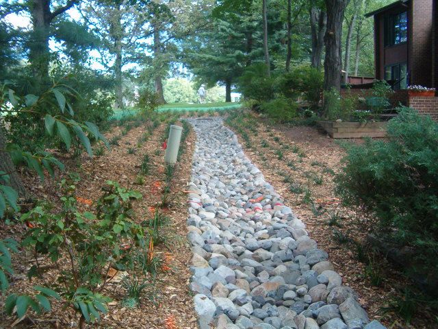 Drainage swale also used woodchips and ground cover to for Outdoor ground drains