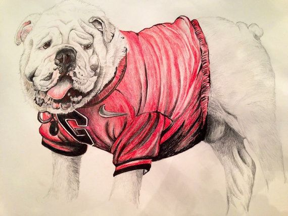 Custom pencil drawings colored or black and by susanelizabethart ...