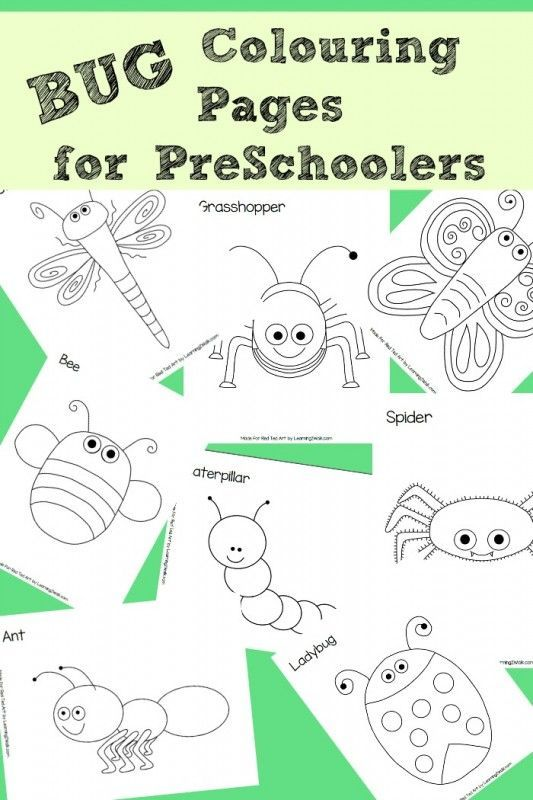 8 Free Bug Colouring Pages, perfect for Preschoolers | BUGS ...