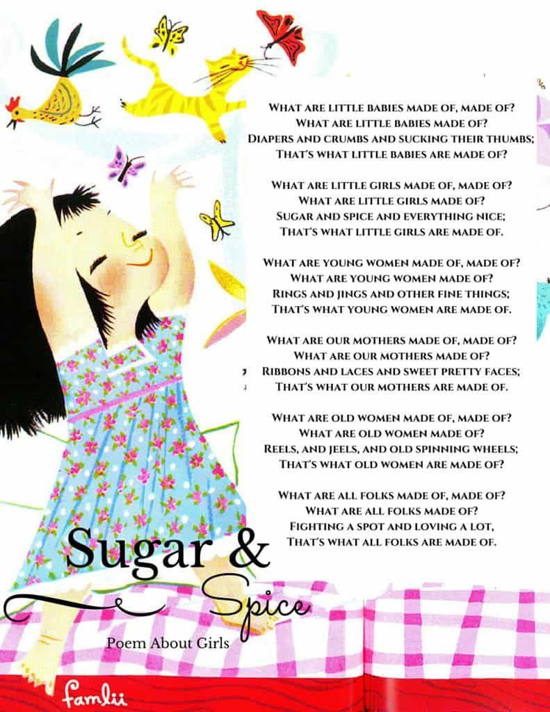 If girls are sugar and spice what are little boys made of