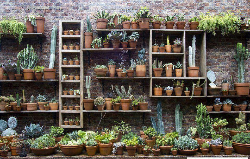 Wall storage garden